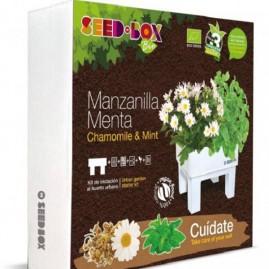 Huerto urbano Bio manzanilla-menta